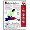 Wall Poster-Sudden Cardiac Arrest