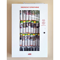 Allergy Emergency Kit™ Replacement Breakaway Windows