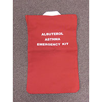 Allergy Emergency Kit™ Replacement Emergency Evacuation Tote Bag - Inhalers