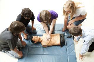 Teenagers Practice CPR Landscape
