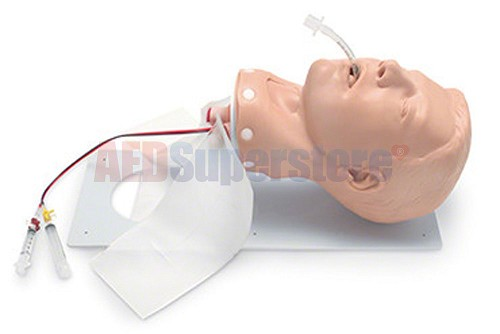 Simulaids Deluxe Adult Airway Management Head