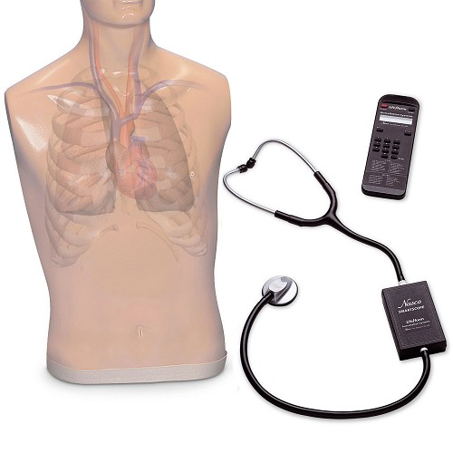 Life/form® Auscultation Trainer and SmartScope