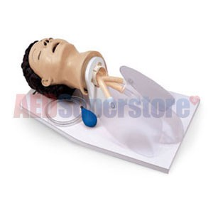 Life/form® Adult Airway Management Trainer w/Stand & Case