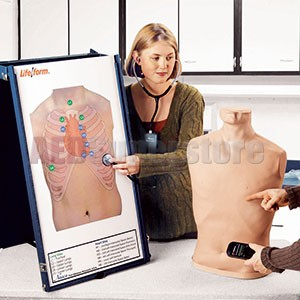 Life/form® Complete Auscultation Training Station